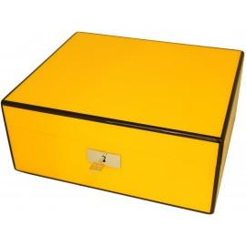 humidor in cohiba yellow with black trim in piano finish
